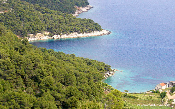 Bay Medvidina near village Gdinj on the island Hvar, Dalmatia, Croatia
