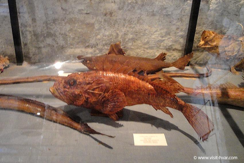 Vrboska, Island Hvar - Fishing Museum